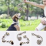 SDYDAY Hundespielzeug, Seil für Hunde, stabil, interaktives Spielseil, fördert Das Kauen