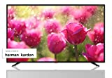 "Sharp AQUOS Smart TV da 40"" UHD 4K HDR Slim, suono Harman Kardon SAT Internet WiFi Youtube Netflix SD Card 3xHDMI 2xUSB"