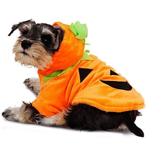 Ghost Kostüm Party - JNTM Halloween Haustier Hund Kostüm, Halloween Kürbis Hoodies Haustier Hund Katze Schädel Kleidung Cute Puppy Ghost Kostüm Hund Pullover Kürbis Haustier Pullover Halloween Holiday Party,XL