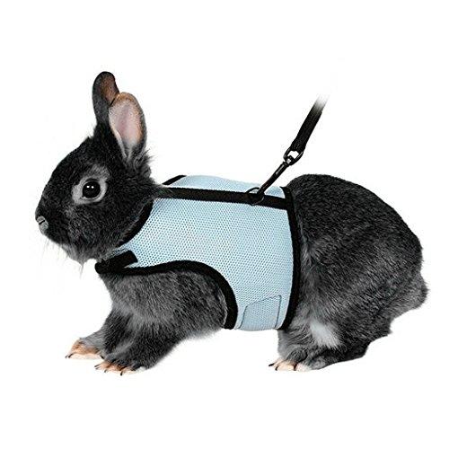 Bwogue Softgeschirr mit elastischer Spitze für Kaninchen Hase
