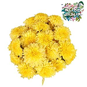 Rose Bazaar Sevanthi Flower Box - 1Kg (Mixed)
