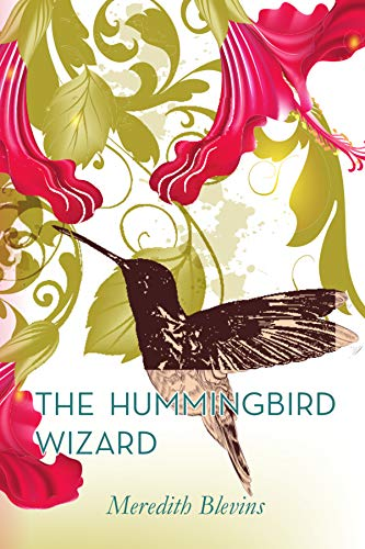 The Hummingbird Wizard (The Mystic Cafe Trilogy Book 1) by [Blevins, Meredith]