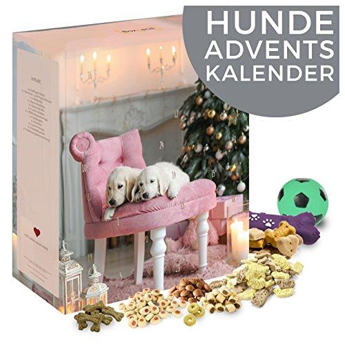 Adventskalender für Hunde I Weihnachtskalender mit 24 tollen Hundeleckerlis I Hunde Kalender als Geschenk für Ihren Liebsten I Geschenkset in der Weihnachtszeit Adventszeit I Snacks für Hunde mit ausgefallenen Leckerlies (Hund)
