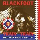 Southern Rock s Best-Train Train [Vinyl LP]