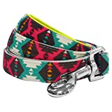 Blueberry Pet Lead with Soft & Comfortable Handle, 150 cm x 2cm Vintage Tribal Pattern Padded Dog Lead in Extravagant Green, Medium