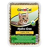 GimCat Hydro-Gras, Katzengras aus kontrolliertem Feldanbau, Einfache Aufzucht in 5 bis 8 Tagen mit nur 1x gießen, 1 Schale (1 x 150 g)