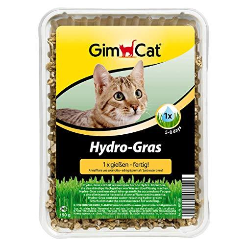 GimCat Hydro,Gras, Katzengras aus kontrolliertem Feldanbau, Einfache Aufzucht in 5 bis 8 Tagen mit nur 1x gießen, 1 Schale (1 x 150 g)