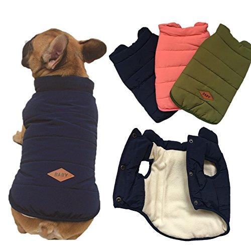 Tineer mit Kapuze Haustier Kleidung Cute Pet Kleidung Warm mit Kapuze französische Bulldogge warme Weste Anzug (XXL, Blau) -