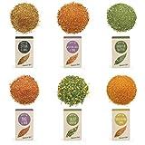 """RINAMA - Set di 6 mix di erbe e spezie """"Grill"""" per carni, pesce, verdure e insalate - Miscele profumate - Cucina, barbecue e condimenti - Scatola di degustazione da offrire"""