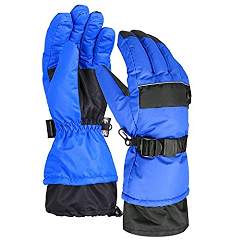 Terra Hiker Waterproof Microfiber Winter Ski Gloves 3M Thinsulate Insulation (Blue, L)