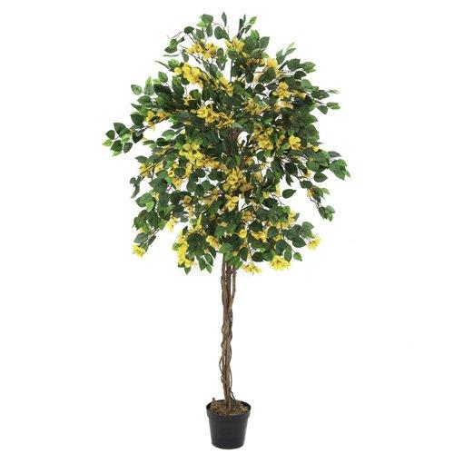 Euro Palms 82507081 Bougainvillea 180 cm, gelb