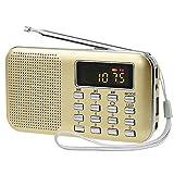 iMinker Mini Digital Radio AM / FM Média Portable Speaker MP3 Music Player Soutien TF / Port USB avec affichage à l'écran LED, lampe de poche d'urgence, 3.5mm Jack (Or)