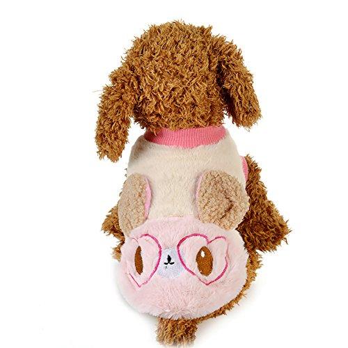 Eichhörnchen Kostüm Hunde Für - Hund Plüsch Kleidung, Eichhörnchen Pullover Hund Kostüme Winter Pet Kleine Hund Kleidung Warmen Mantel 2 Farbe & 5 Größe (Color : Pink, Size : S)