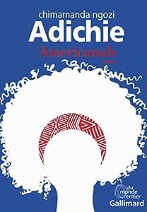 vignette de 'Americanah (Chimamanda Ngozi Adichie)'