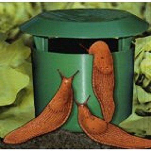 timtina-set-of-4-organic-snail-traps