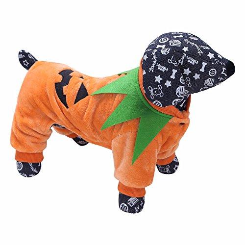 iiniim Hund Kostüm Halloween Kürbis Cosplay Hundebekleidung Herbst Winter Hundemantel Pullover Gr.S-XXL Orange M (Windeln Halloween Kostüme)