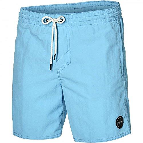 O 'Neill Vert Men's Swim Shorts Swimwear Swim Trunks