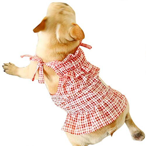 Kostüm Im Katze Tutu Hut - Kleiner Hund Kariert Welpen, Hawkimin Katze Tutu Kleid Pet Puppy Sundress Kleidung Bekleidung Hundkostüm Hustierkostüm für Feste Halloween Weihnachten für Frühling Sommer Herbst