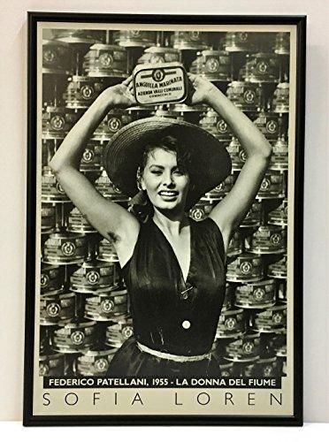 Stampa Sofia Loren con cornice,cm42x62.