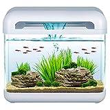 Mantovani Pet Diffusion Aquarium Derby Blanc-4500g