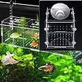 wentingZWT_Aquarium-Zucht-Isolationsbox, Brutkasten für Babyfische