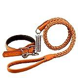 Hundeleine Leder Halsband Hundeleine Seil Hund Kette für mittlere große Hunde