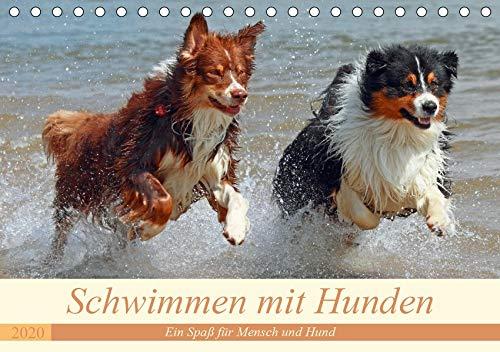 Schwimmen mit Hunden - Ein Spaß für Mensch und Hund (Tischkalender 2020 DIN A5 quer): Hunde beim Tollen im Wasser - es macht einfach Spaß ihnen zuzusehen. (Monatskalender, 14 Seiten ) (CALVENDO Tiere)