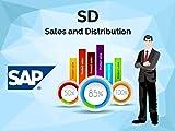 #9: SAP SD Configuration Manual: SAP SD