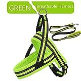 LUCYPET Reflektierende Leine Polyester-Bandseil Breathable Soft Harness Training Set Laufen Non-Pull Harness für Small Medium Large Dog-Green,S