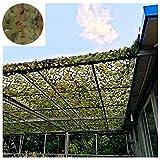 Woodland Tarnnetz Grün, 4x5m Garten Balkon Sonnenschirm Dekoration Armee Tarnnetz Camping Jagd Schießen Verstecktes Gebäude Schutz Schwimmbad Party Pavillon Carport 2m3m6m8m10m ( Size : 2*3M )