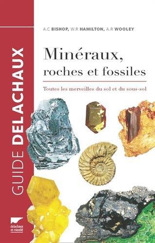 mineraux-roches-et-fossiles-toutes-les-merveilles-du-sol-et-du-sous-sol