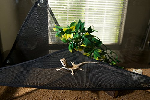GenRev 2pc Reptile Hammock Lounger Accessories Set for Large & Small Bearded Dragons Anoles Geckos Lizards or Snakes… 9
