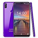 OUKITEL C16 PRO(2019) 4G Smartphone ohne Vertrag Günstig 5,71 Zoll Android 9.0 3GB RAM+32GB ROM, 8MP+5MP Dual Kamera, 2600mAh Akku Dual SIM Handy-Lila
