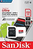 SanDisk 256GB Class 10 MicroSD Card with Adapter (SDSQUAR-256G-GN6MA)