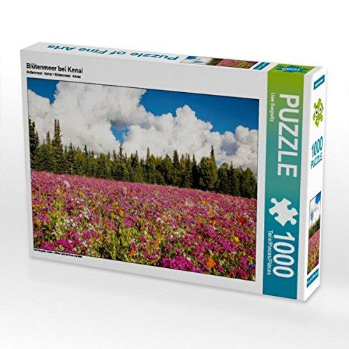 Blütenmeer bei Kenai 1000 Teile Puzzle quer (CALVENDO Orte) Preisvergleich
