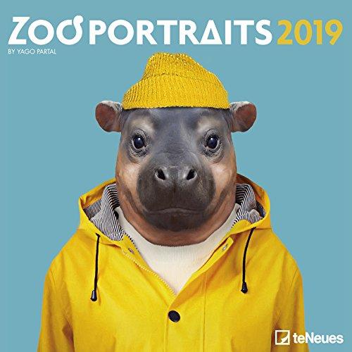 Zoo Portraits Broschurkalender - Kalender 2019 - teNeues-Verlag - Yago Partal - Wandkalender mit Platz für Eintragungen - 30 cm x 30 cm (offen 30 cm x 60 cm)