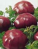 Portal Cool 100 Samen: 20/100 Tomatensamen Schwarz Elefanten (Chyornyi Slon) Russisch Erbstück Gemüse
