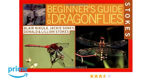 Stokes Beginners Guide to Dragonflies