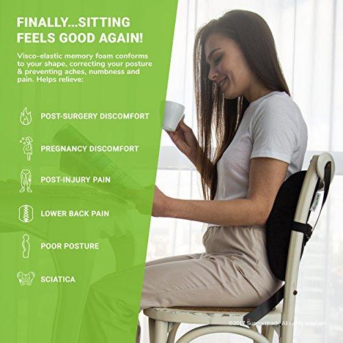 ! Cuscino lombare memory per terapia della postura – Sostegno ergonomico per la schiena – Cuscino per la casa, l'ufficio, l'auto, il viaggio – Allevia e previeni il dolore alla schiena confronta il prezzo