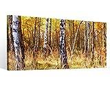 Leinwandbild 1Tlg Birke Birkenwald Wald Baum Herbst Leinwand Bild Bilder Leinwandbilder Druck Holz gerahmt 9X068, 1 Tlg BxH:80x40cm