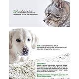 bio-chem® BIO URIN ATTACKE Geruchsentferner bei Katzenurin - 3