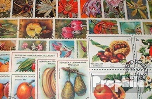 Briefmarken 50 (Motive 50 verschiedene Blumen und Pflanzen Marken (Briefmarken für Sammler))