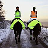 51%2BVRSlRxML. SL160  BEST BUY UK #1Tigerbox® Be Safe Be Seen Adult Hi Vis Safety Vest Waistcoat (XL) Suitable For Horse Riding, Hiking, Jogging, Cycling, Outdoors   Orange price Reviews uk