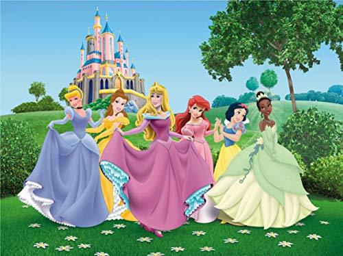Fototapete FTDNxxl5003 Disney Princesses ()