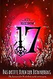 17 - Das dritte Buch der Erinnerung von Rose Snow