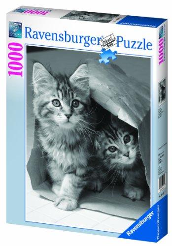 ravensburger-puzzle-19411-classic-cache-cache-1000-pieces