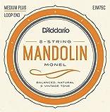 D 'Addario Mandolinen-Saiten, ejm75C)