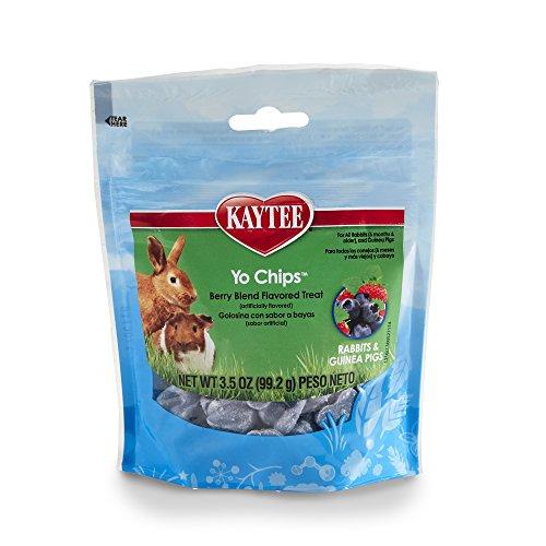 Kaytee Mixed Berry Geschmack Joghurt Chips für Kaninchen und Meerschweinchen, 3.5-oz Tasche (Pellet Behandelt)