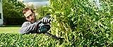 Bosch Home and Garden Akku-Heckenschere AHS 55-20 LI, Ladegerät, Karton 18 V, 2,5 Ah, Ladezeit 1h, Schnittlänge 55 cm, Messerabstand 20 mm, 1 Stück, 0.600.849.G00