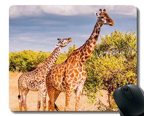 Rechteck-Mausunterlage, Baby-Tierwild lebende tiere Giraffen-Gummi Mousepad Genähte Ränder